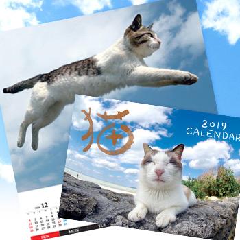 猫カレンダー2017