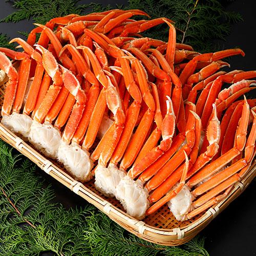 本ズワイガニ 脚Lサイズ ボイル 冷凍 3.0kg(16~20肩入)