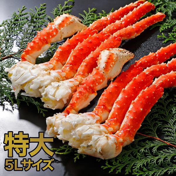 タラバガニ脚 5Lサイズ ボイル 冷凍 1.6kg