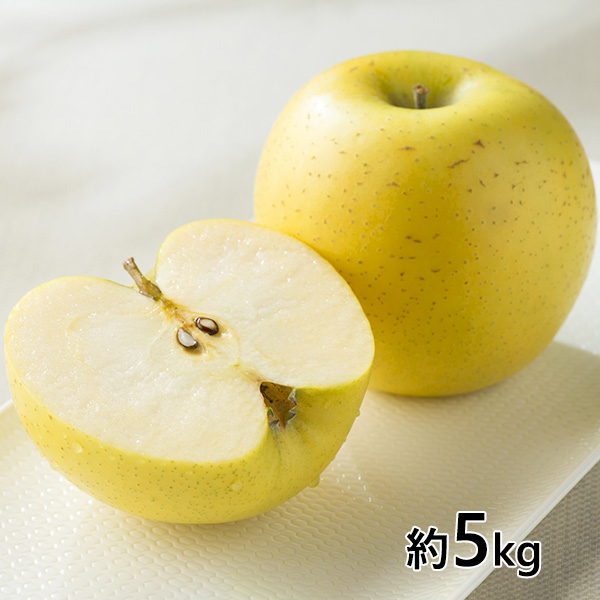 【期間限定販売】 おぐま屋 長野県産シナノゴールド秀品 約5kg