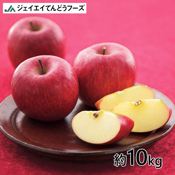 JA天童フーズ 山形県産 訳あり りんご