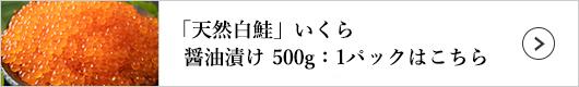 「天然白鮭」いくら醤油漬け 500g:1パックはこちら